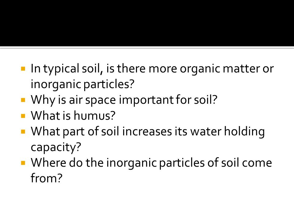 In typical soil, is there more organic matter or inorganic particles