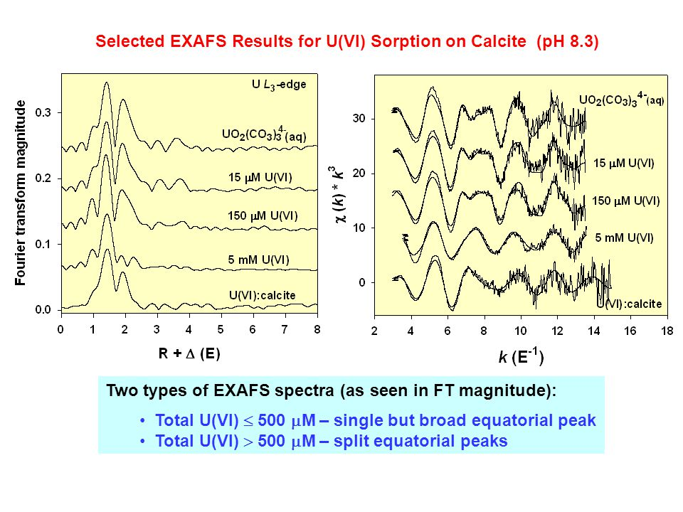 Selected EXAFS Results for U(VI) Sorption on Calcite (pH 8.3)