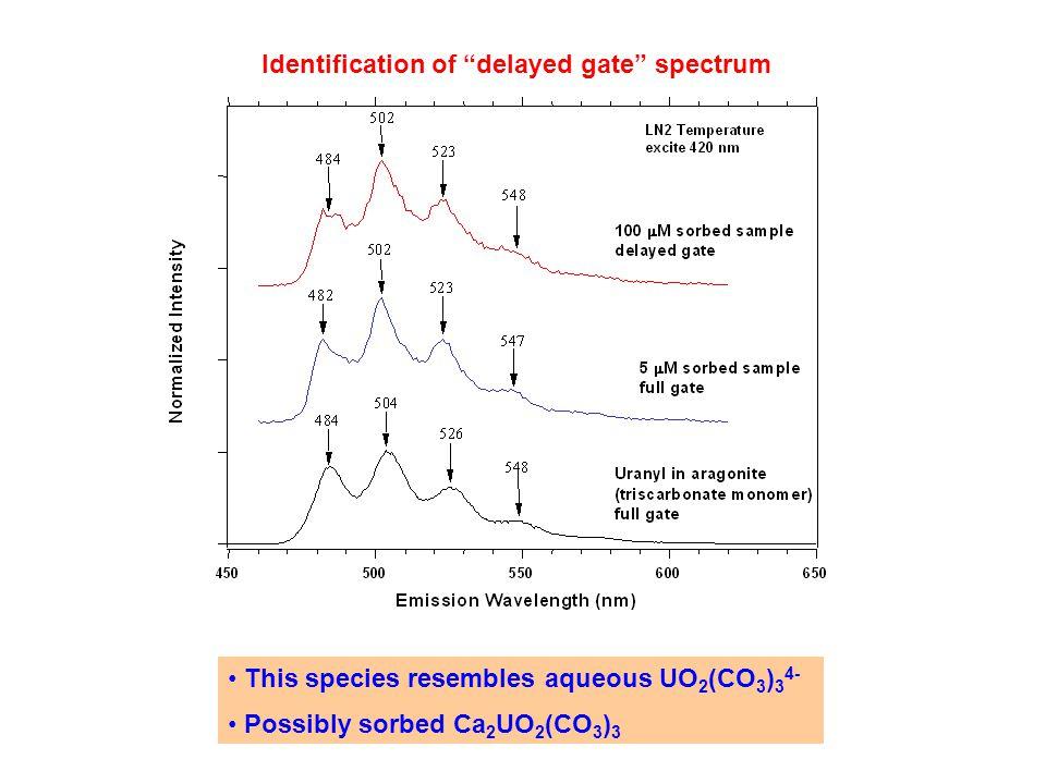 Identification of delayed gate spectrum