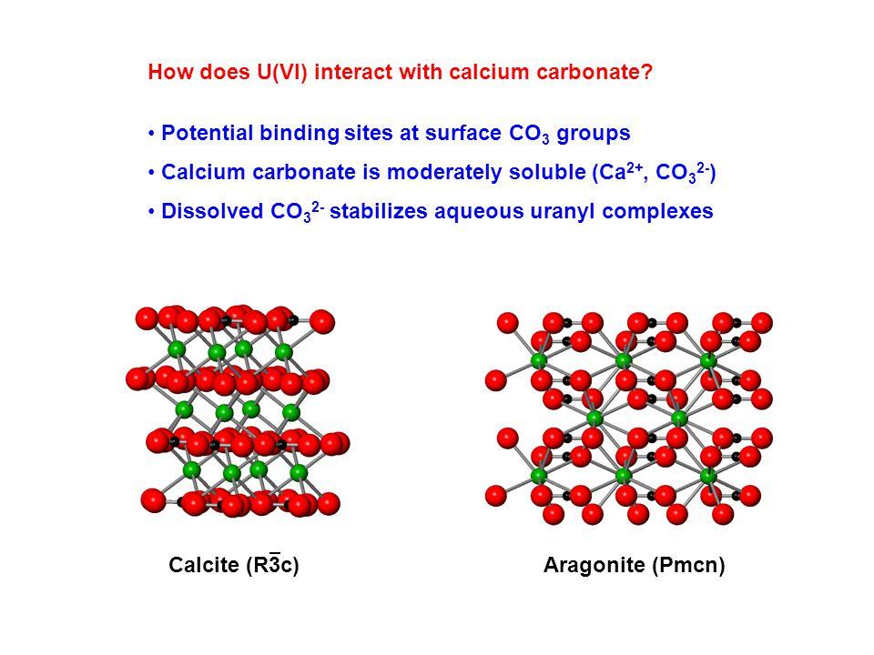 How does U(VI) interact with calcium carbonate