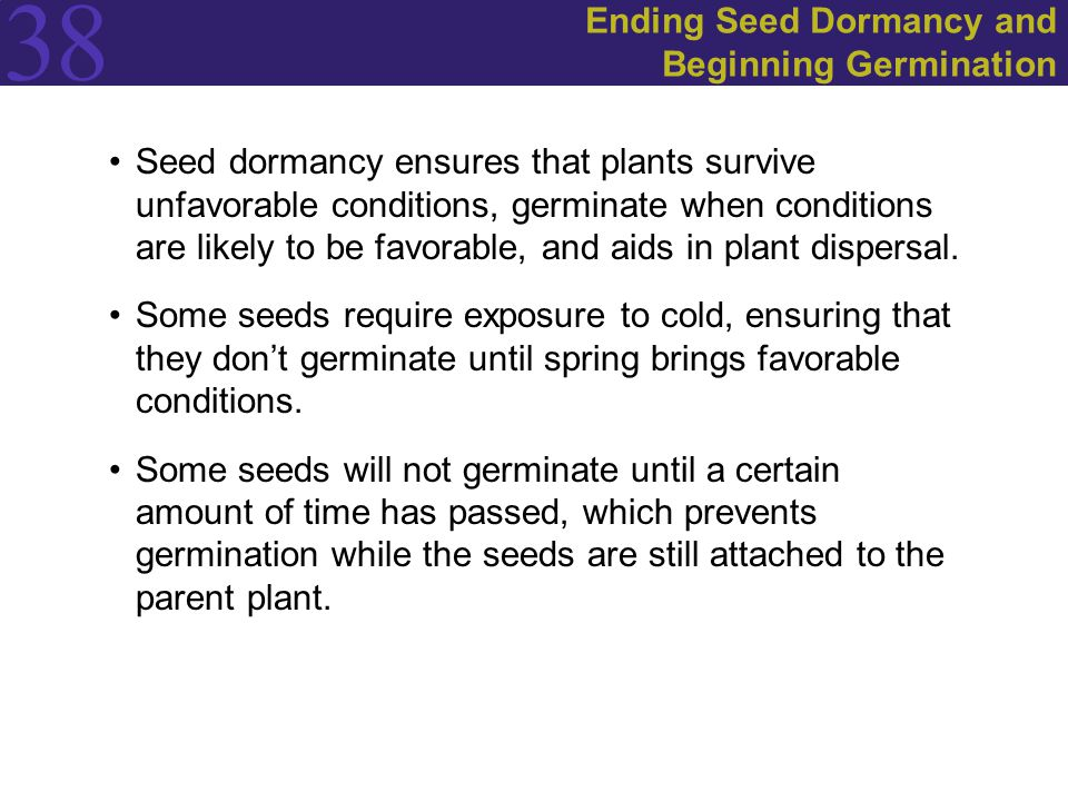 Ending Seed Dormancy and Beginning Germination