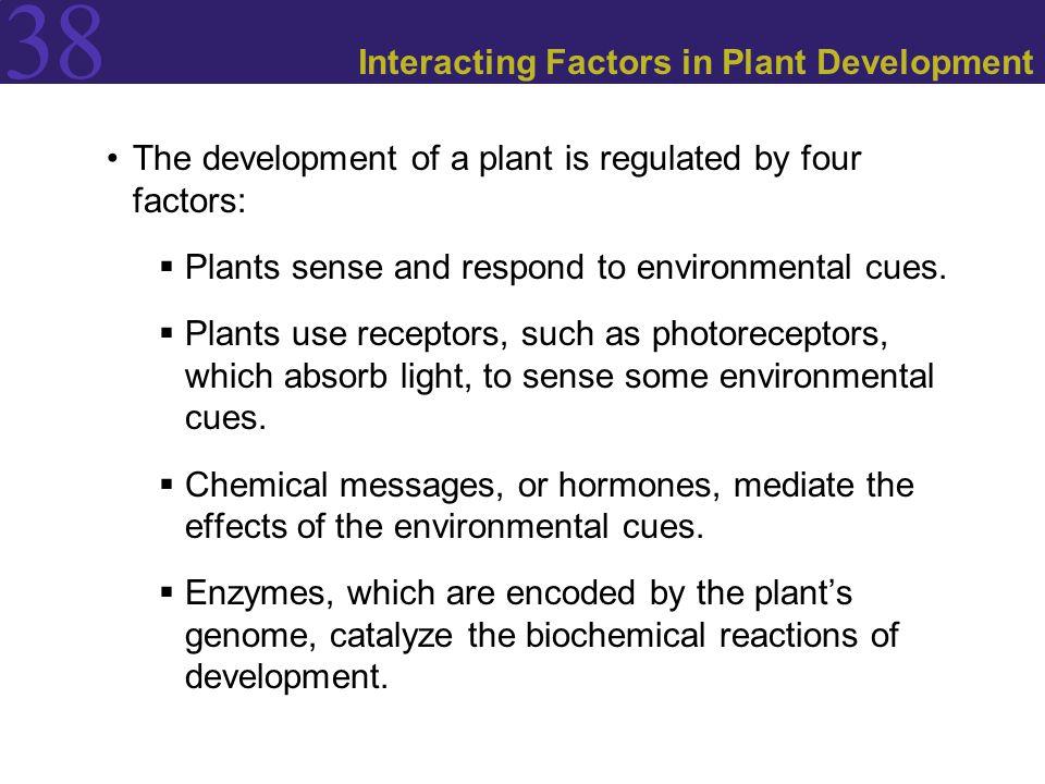 Interacting Factors in Plant Development