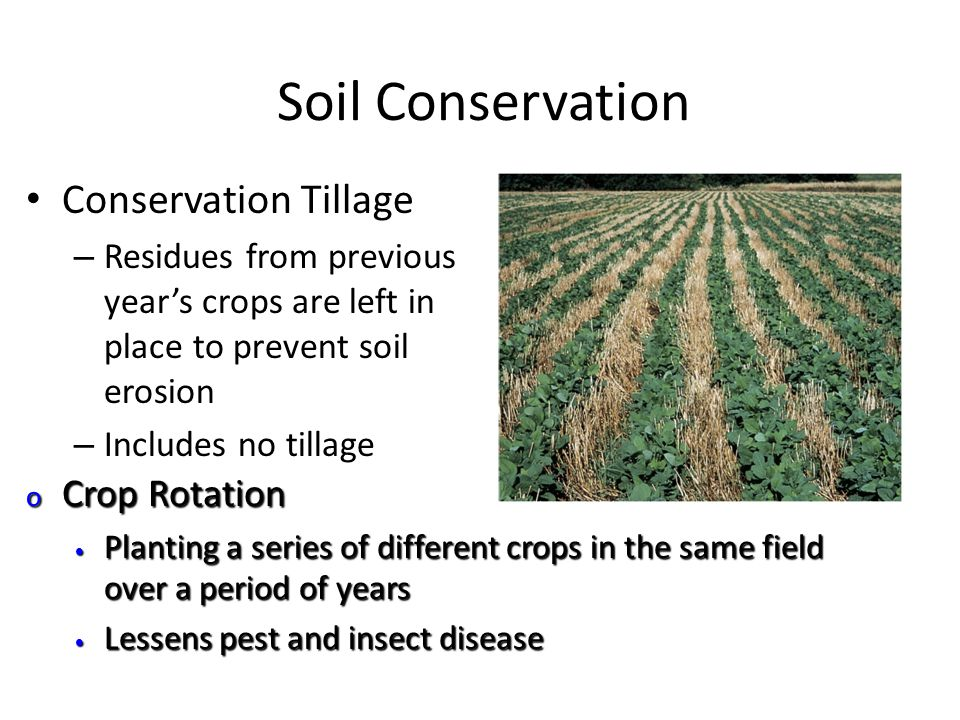 Chapter 15 soil resources ppt video online download for Meaning of soil resources