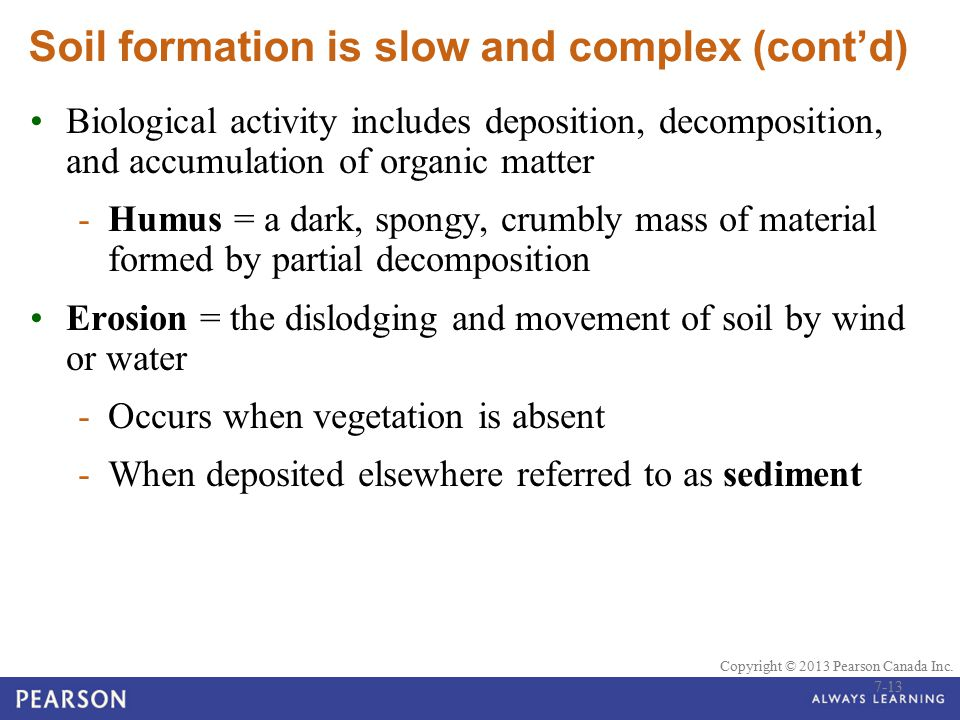 Soil formation is slow and complex (cont'd)