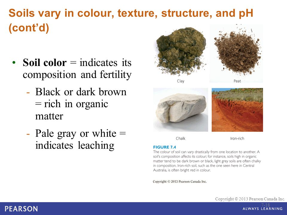 Soils vary in colour, texture, structure, and pH (cont'd)