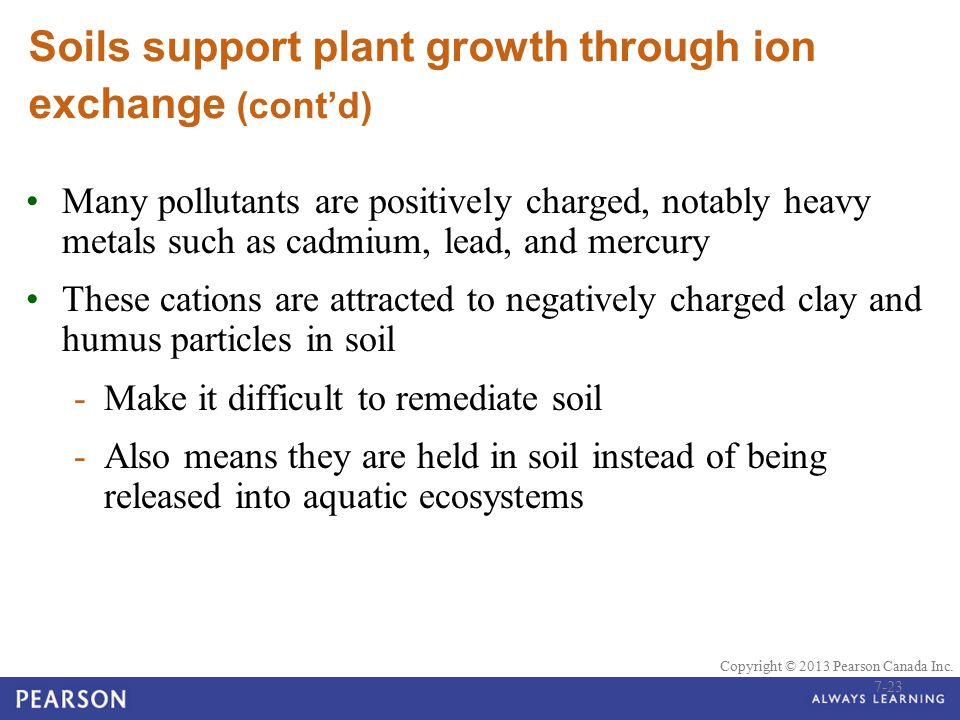 Soils support plant growth through ion exchange (cont'd)
