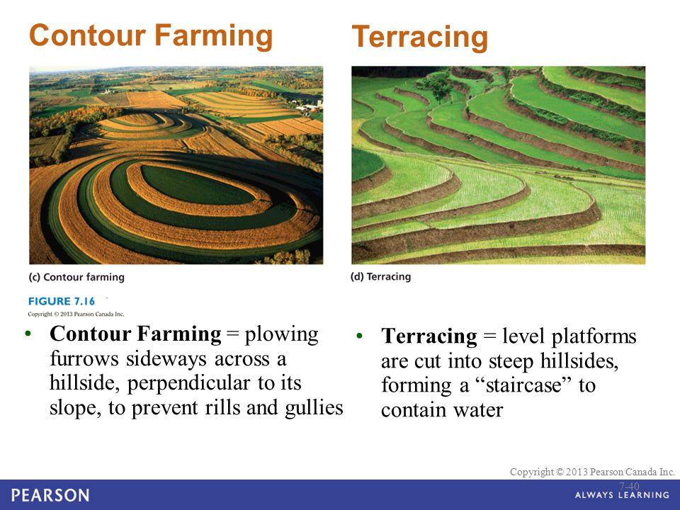 Contour Farming Terracing