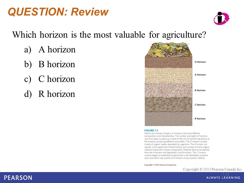 QUESTION: Review Which horizon is the most valuable for agriculture