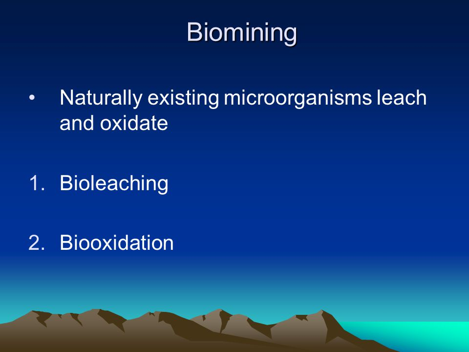 Biomining Naturally existing microorganisms leach and oxidate