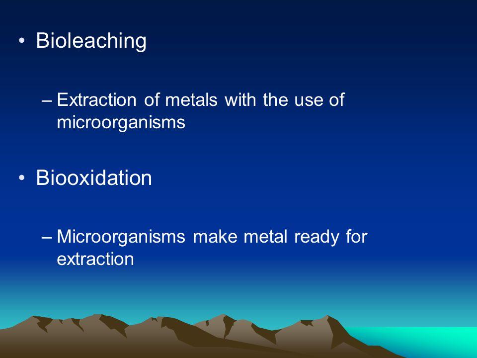 Bioleaching Biooxidation