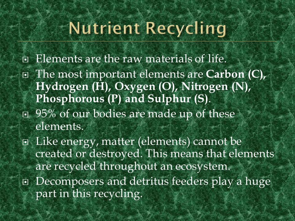Nutrient Recycling Elements are the raw materials of life.