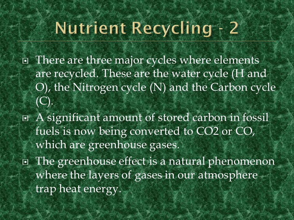 Nutrient Recycling - 2