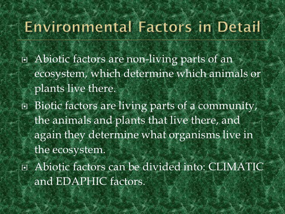 Environmental Factors in Detail