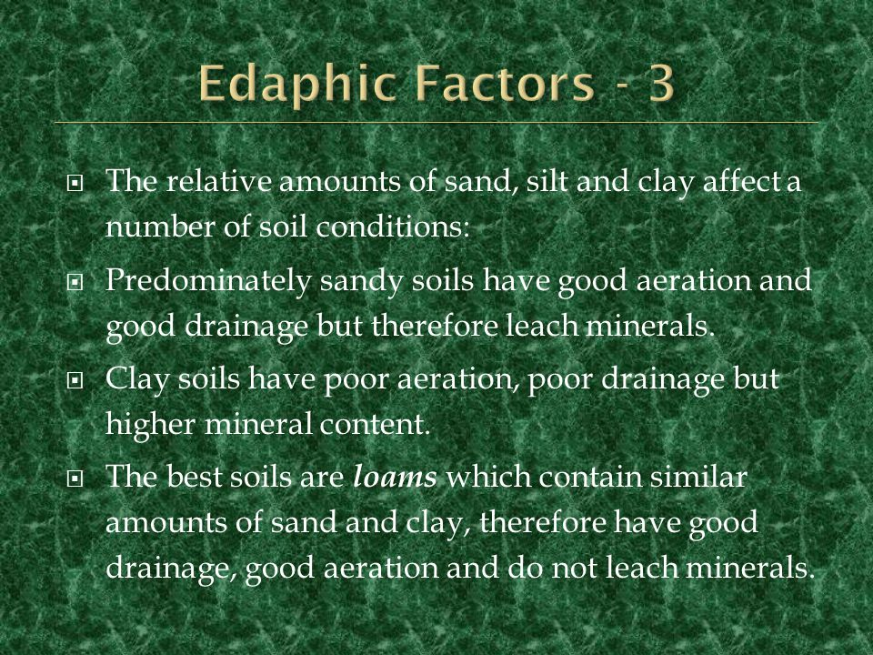 Edaphic Factors - 3 The relative amounts of sand, silt and clay affect a number of soil conditions: