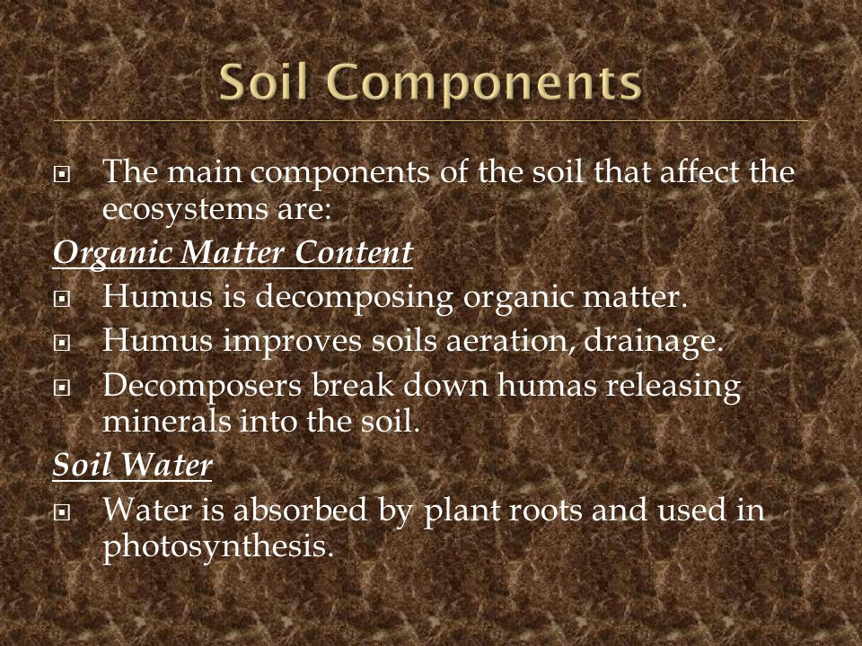 Soil Components The main components of the soil that affect the ecosystems are: Organic Matter Content.