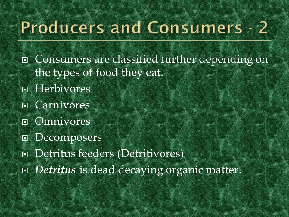 Producers and Consumers - 2