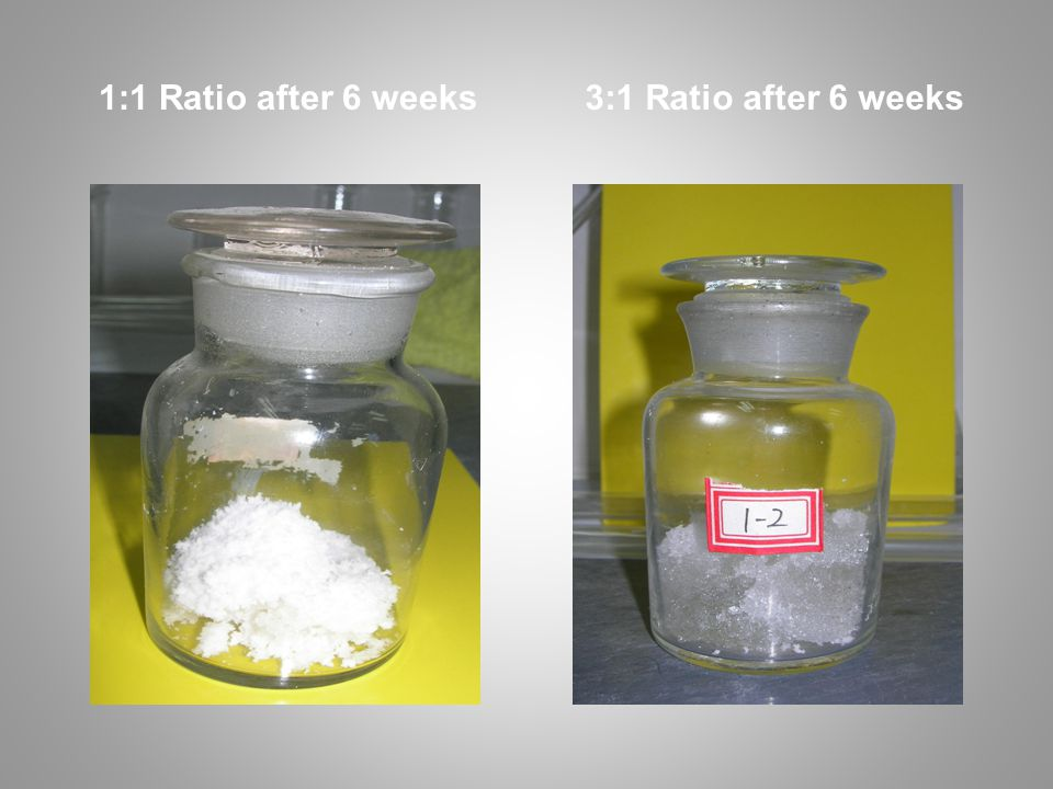 1:1 Ratio after 6 weeks 3:1 Ratio after 6 weeks