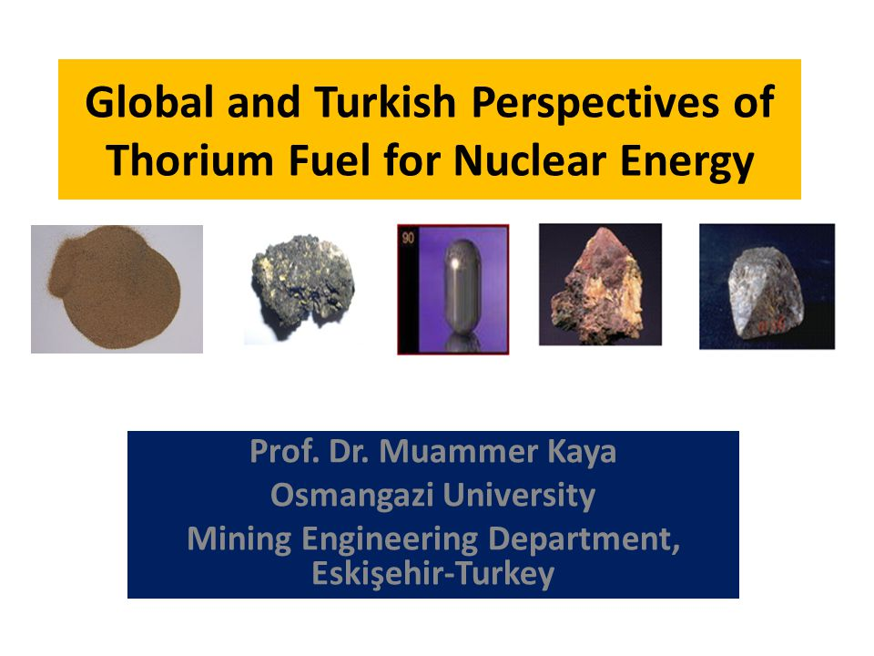 Global and Turkish Perspectives of Thorium Fuel for Nuclear Energy