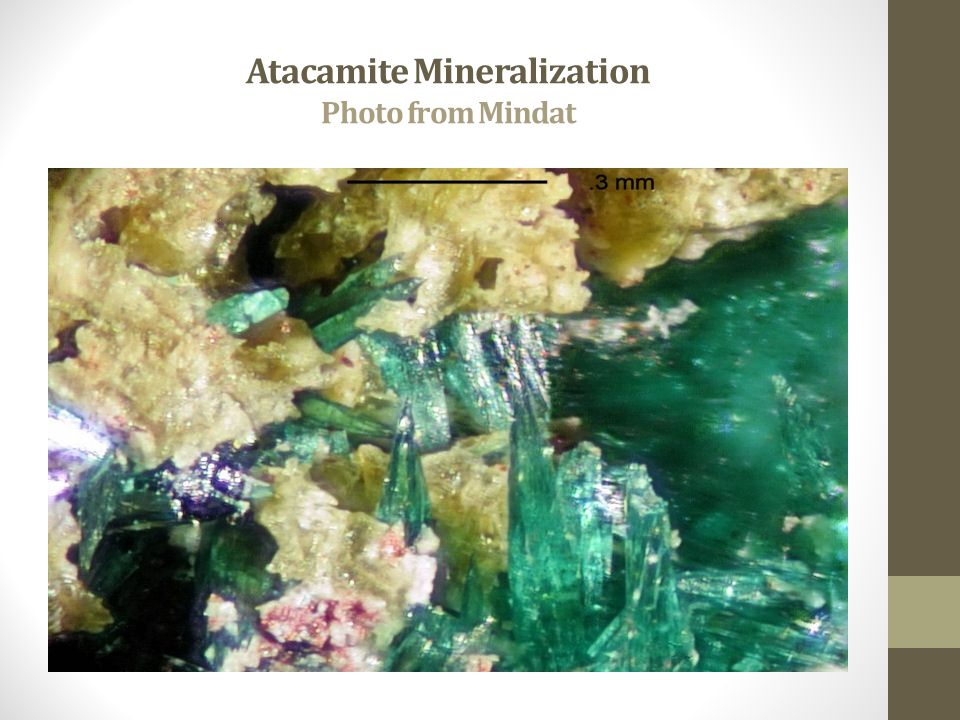 Atacamite Mineralization Photo from Mindat