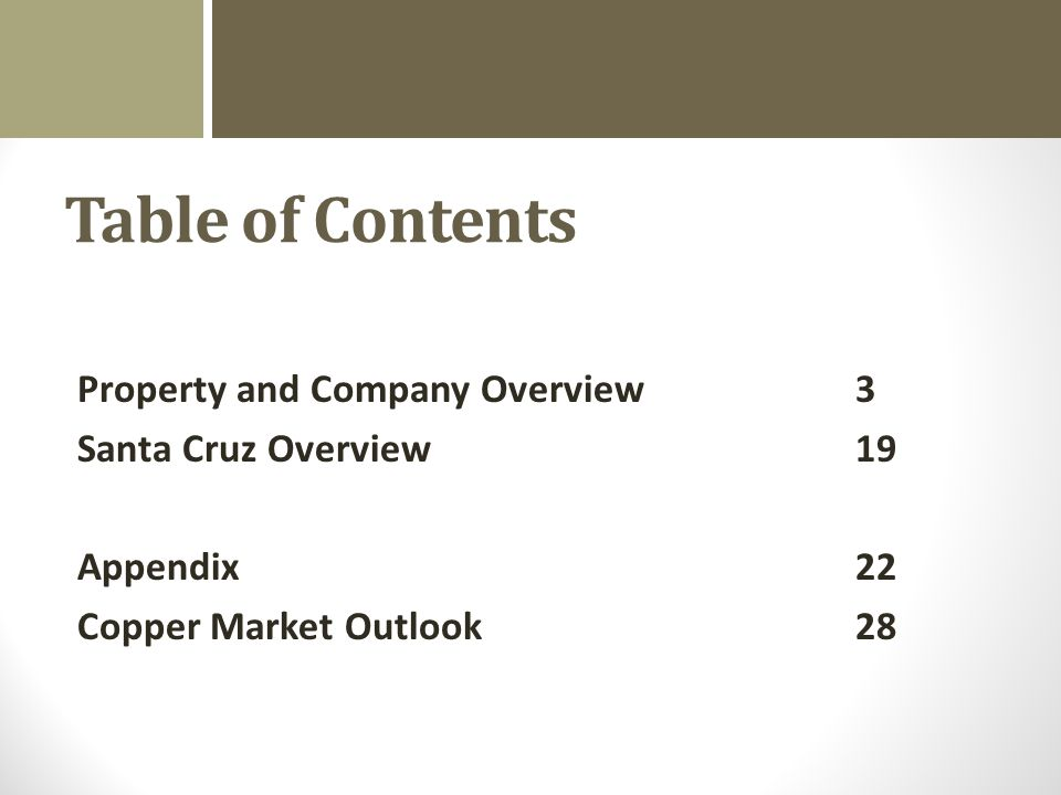 Table of Contents Property and Company Overview Santa Cruz Overview Appendix Copper Market Outlook