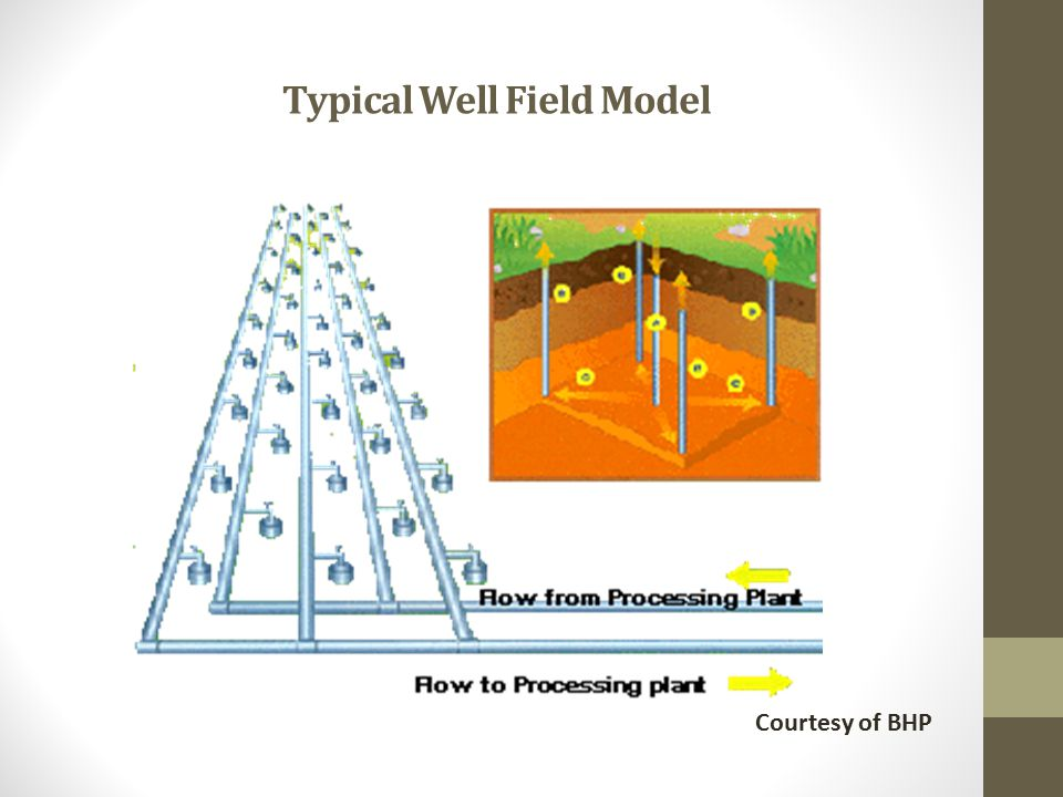 Typical Well Field Model