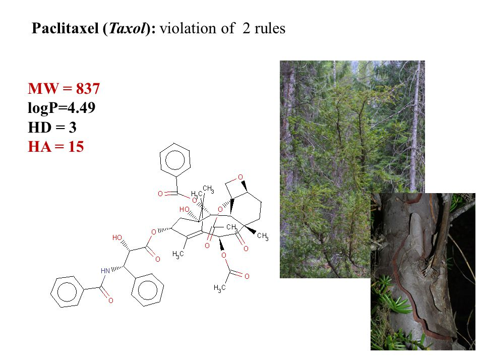Paclitaxel (Taxol): violation of 2 rules