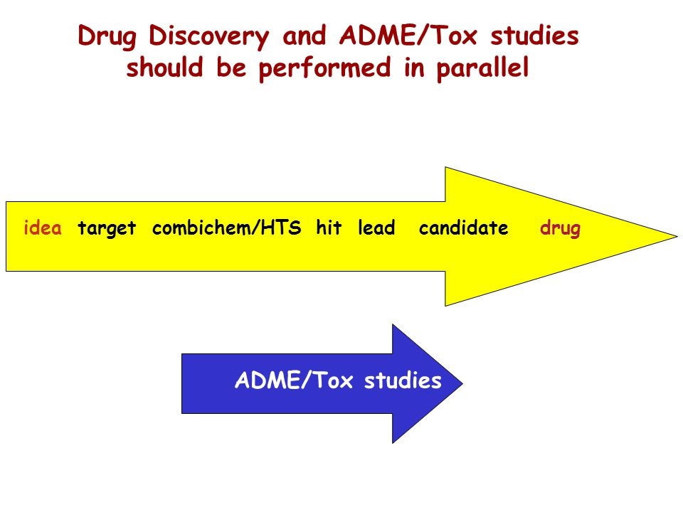 Drug Discovery and ADME/Tox studies should be performed in parallel
