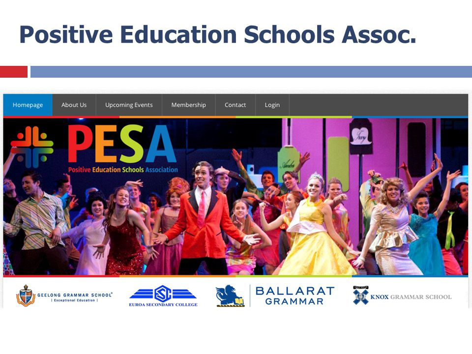 Positive Education Schools Assoc.