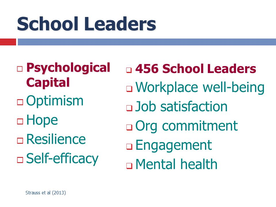 School Leaders Workplace well-being Optimism Job satisfaction Hope