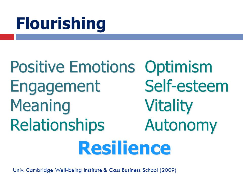 Flourishing Resilience Positive Emotions Engagement Meaning