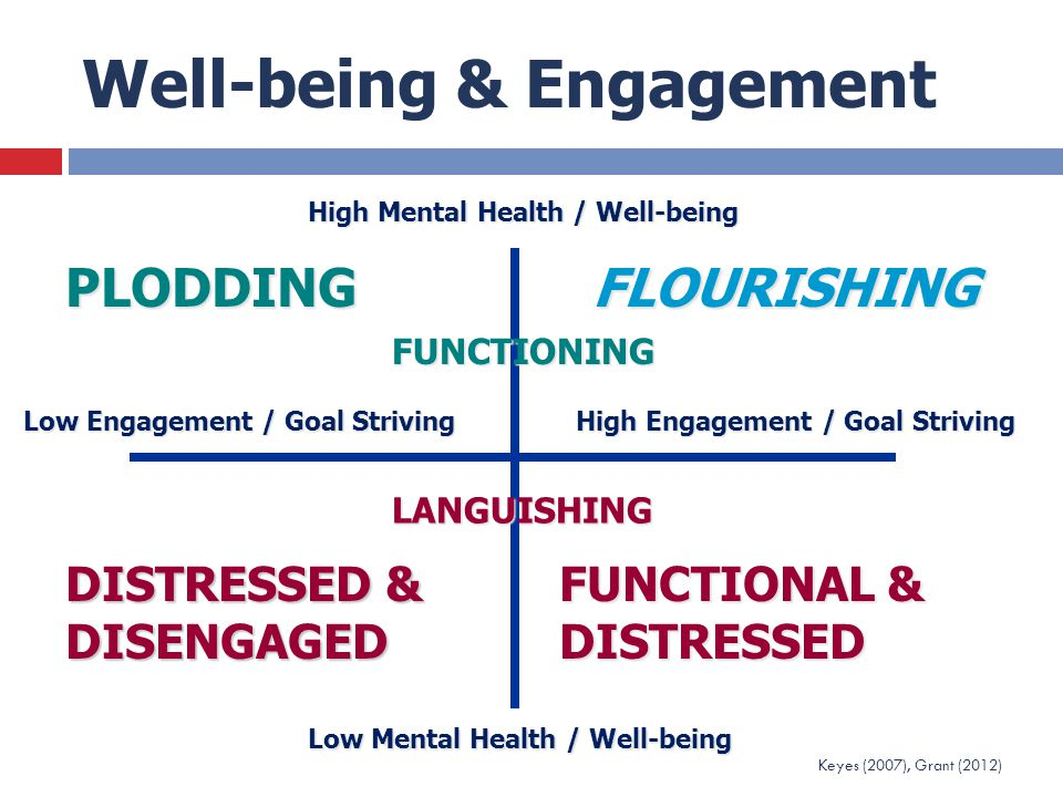 Well-being & Engagement