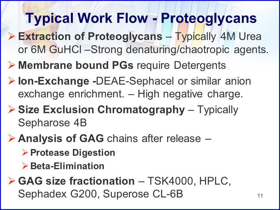 Typical Work Flow - Proteoglycans