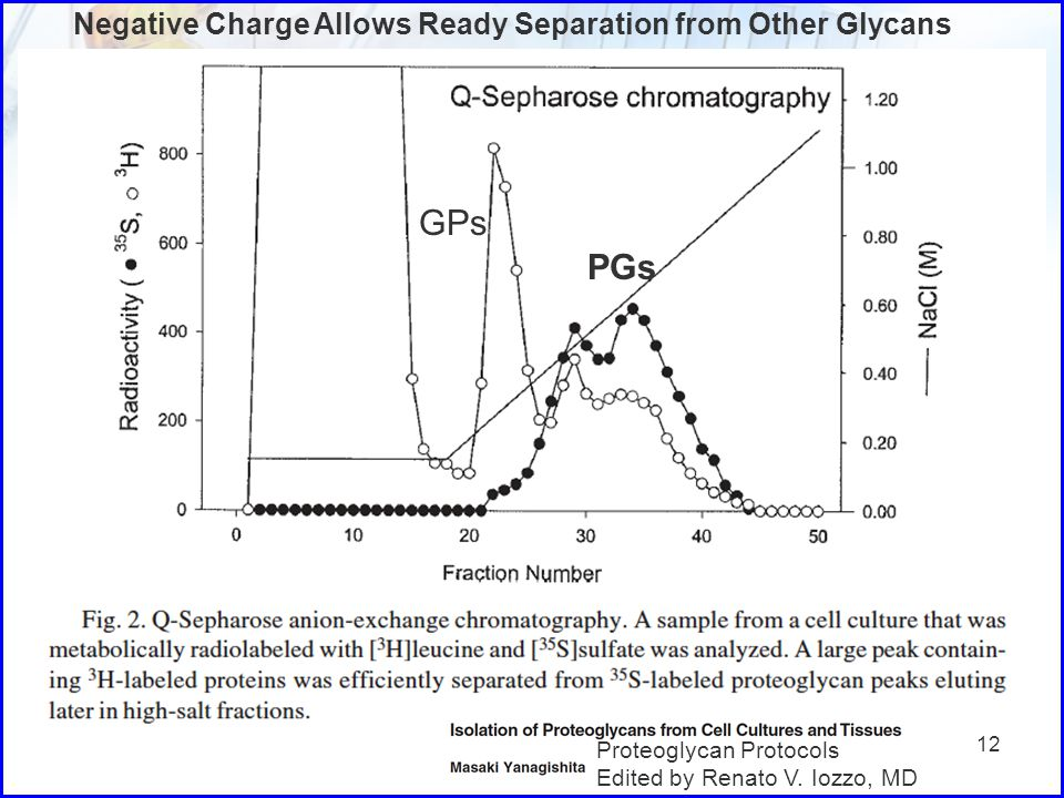 GPs PGs Negative Charge Allows Ready Separation from Other Glycans