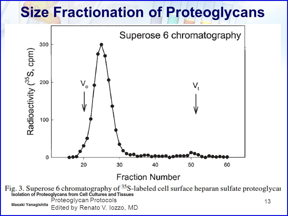 Size Fractionation of Proteoglycans