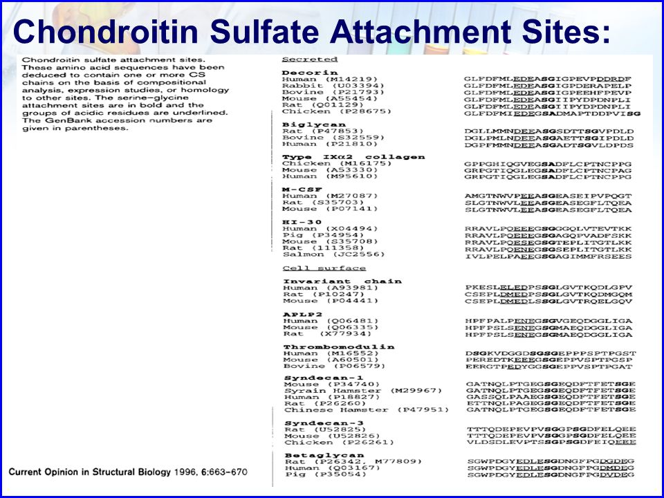 Chondroitin Sulfate Attachment Sites: