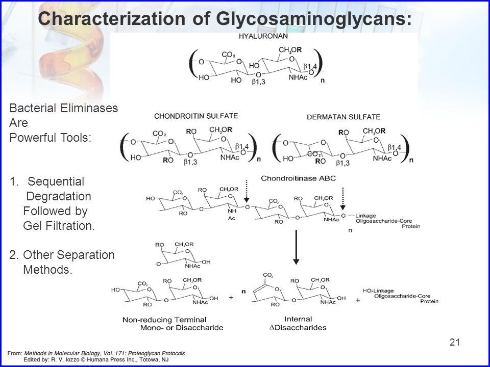 Characterization of Glycosaminoglycans: