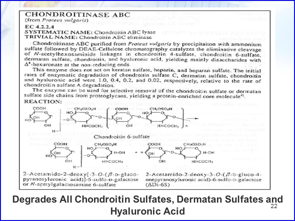 Degrades All Chondroitin Sulfates, Dermatan Sulfates and Hyaluronic Acid