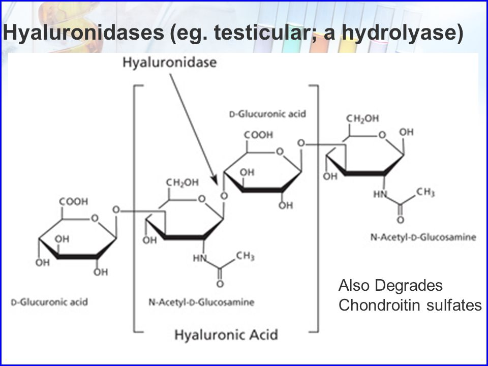 Hyaluronidases (eg. testicular; a hydrolyase)