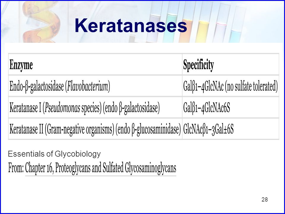 Keratanases Essentials of Glycobiology