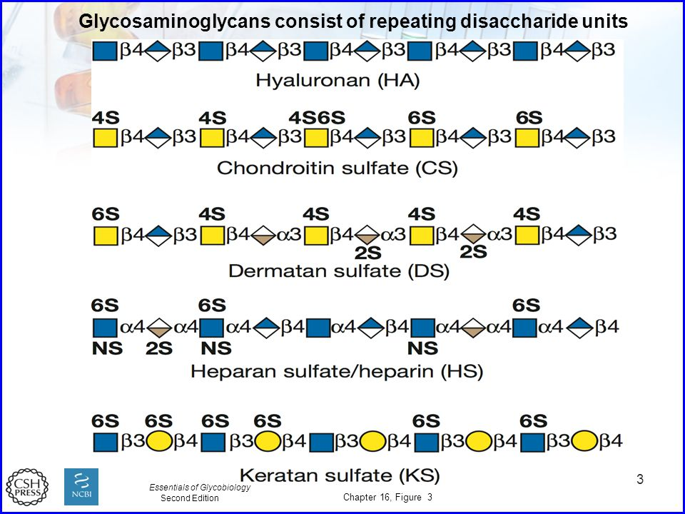Glycosaminoglycans consist of repeating disaccharide units