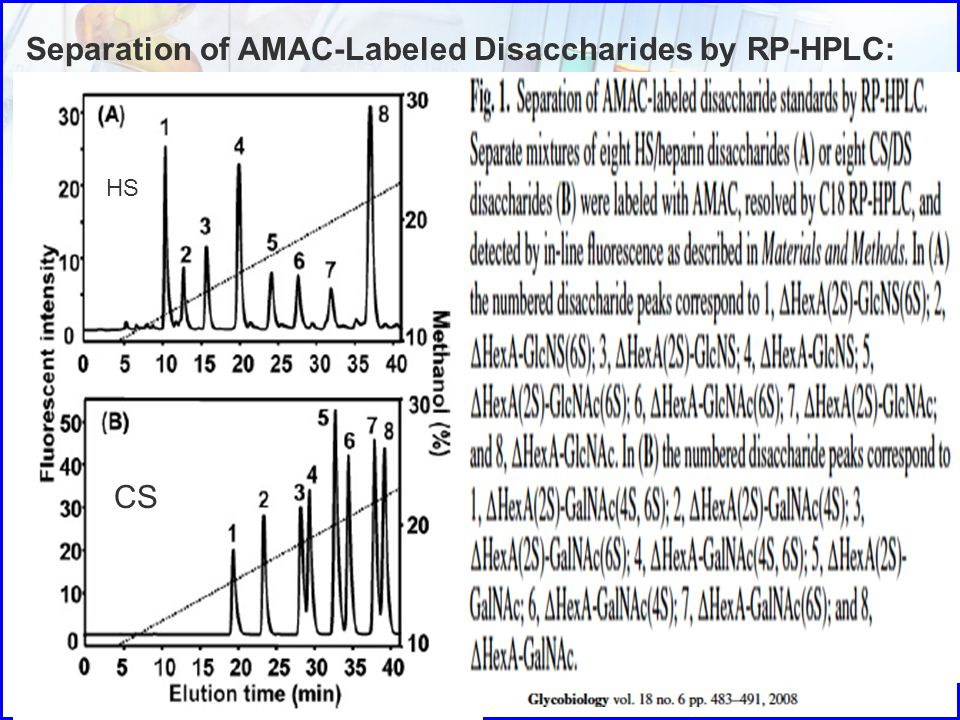 Separation of AMAC-Labeled Disaccharides by RP-HPLC: