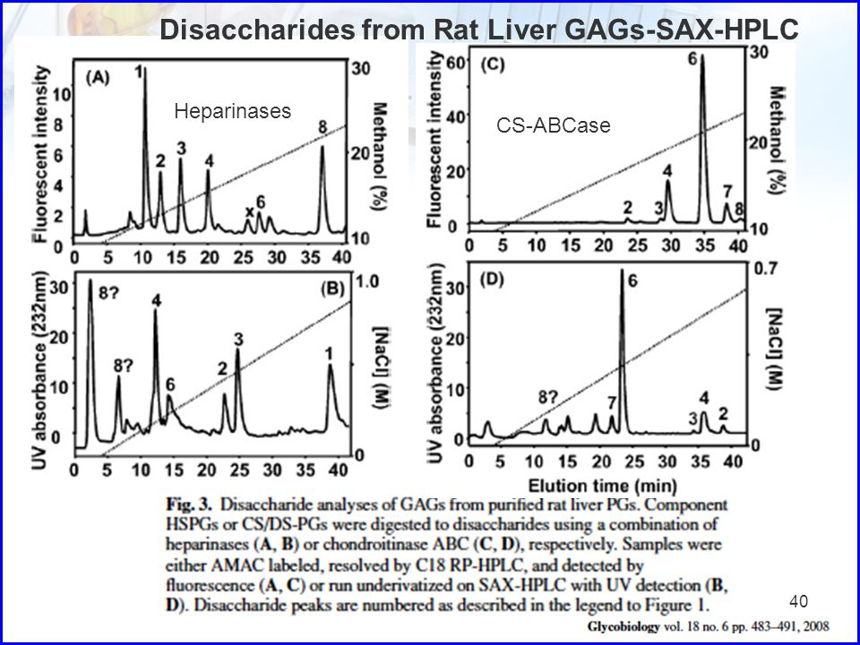 Disaccharides from Rat Liver GAGs-SAX-HPLC