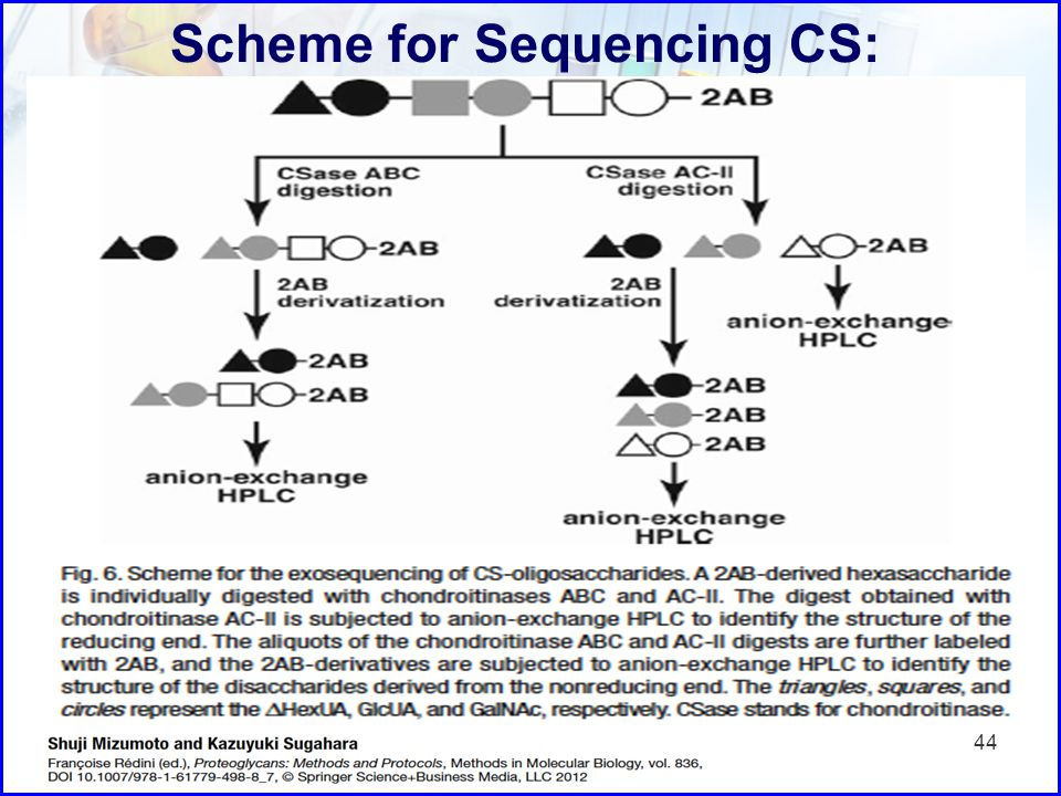 Scheme for Sequencing CS: