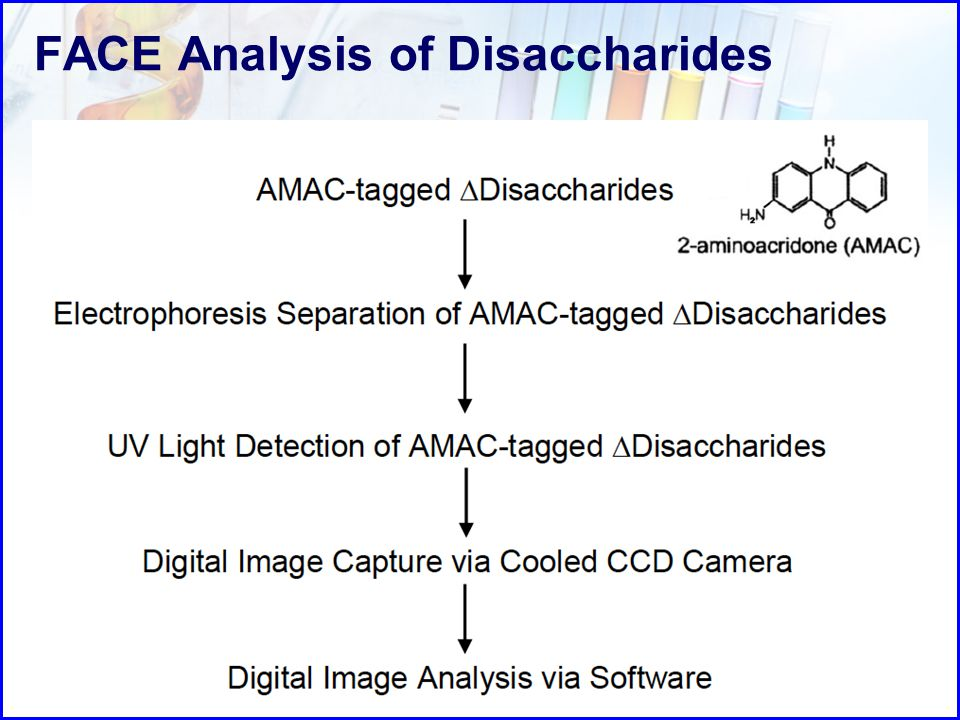 FACE Analysis of Disaccharides