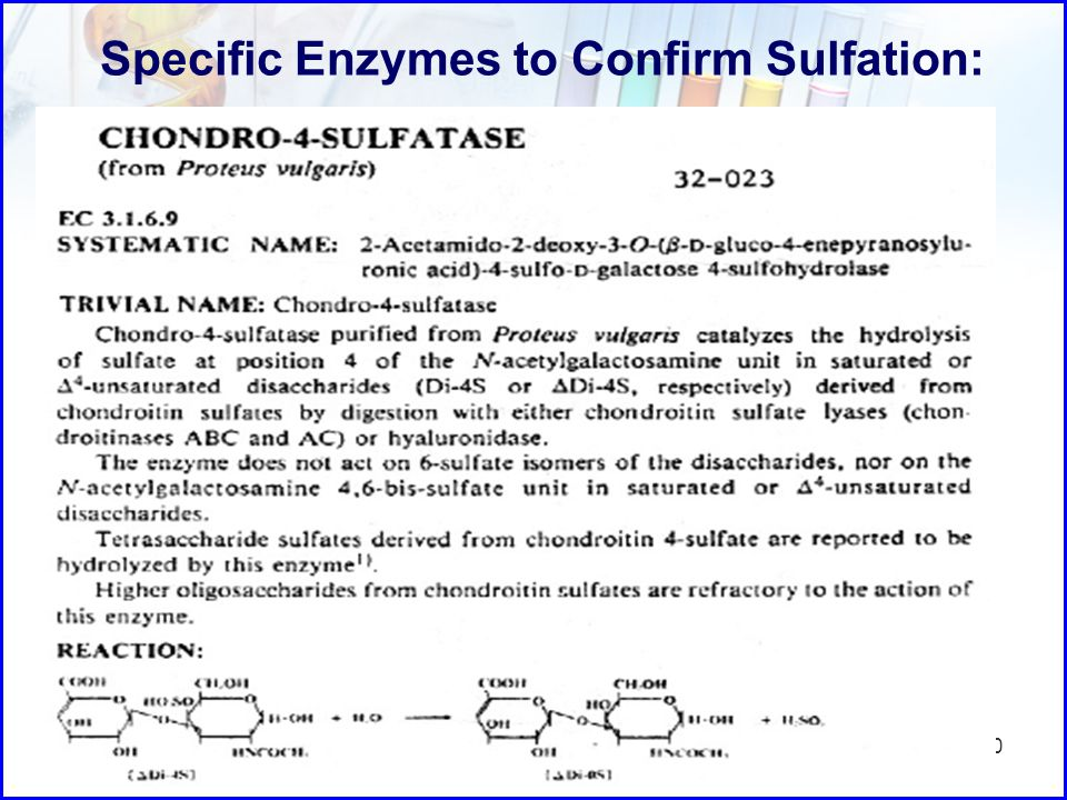Specific Enzymes to Confirm Sulfation: