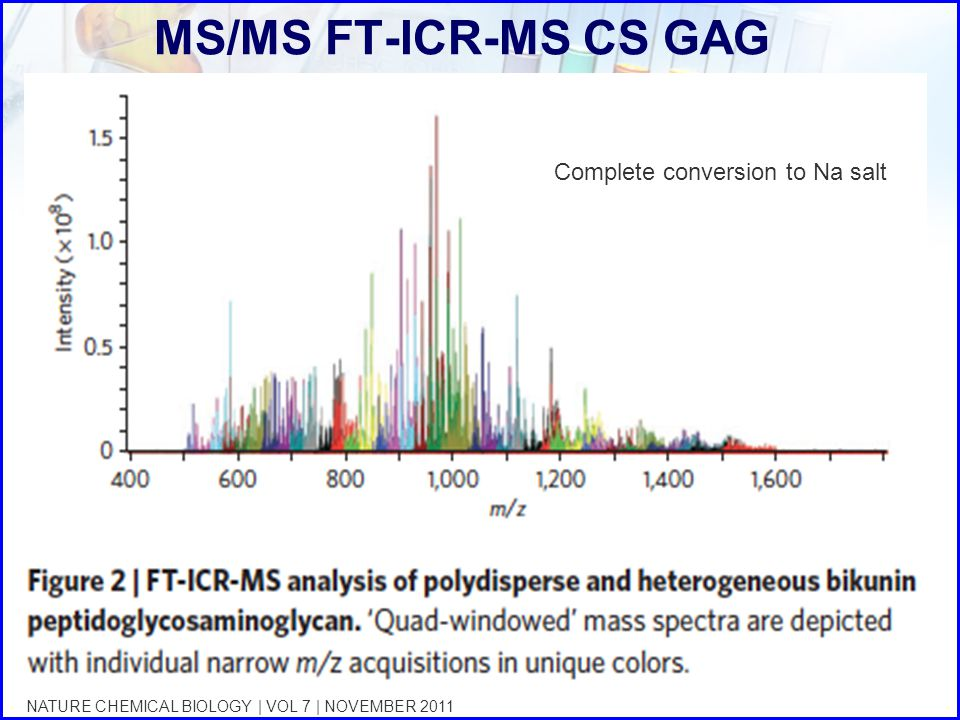 MS/MS FT-ICR-MS CS GAG Complete conversion to Na salt
