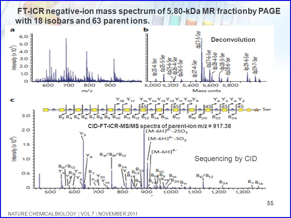 FT-ICR negative-ion mass spectrum of 5