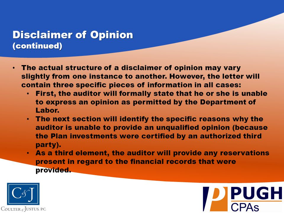 Disclaimer of Opinion (continued)
