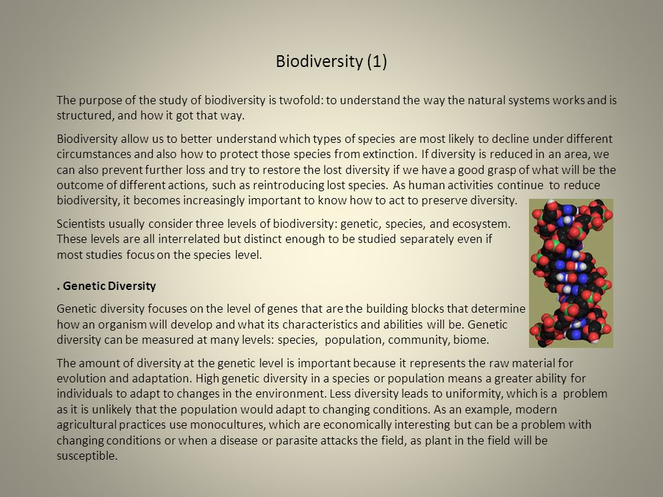 Biodiversity (1)