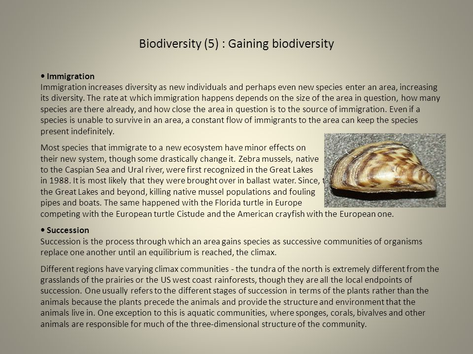 Biodiversity (5) : Gaining biodiversity